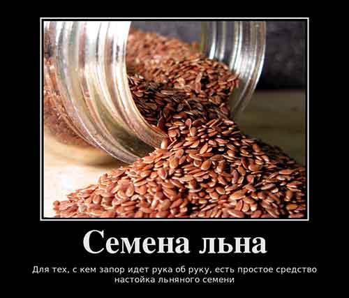 Настойка льняного семени от запора