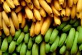 Питание после голодания: как питаться после голодания?