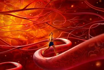 Очищение кровеносных сосудов