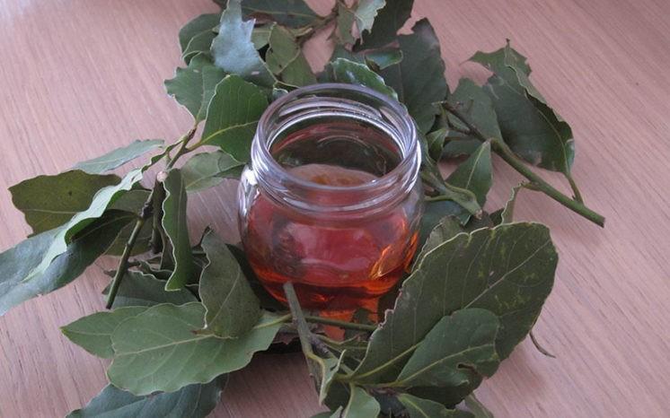 Очищение суставов лавровым листом (по Семеновой)