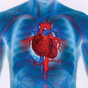 Лечение болезней сердца голоданием