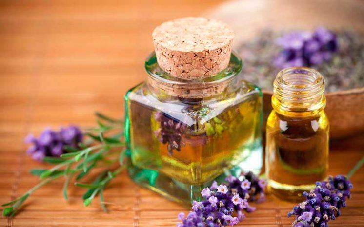 Маски для лица с оливковым маслом: рецепты масок